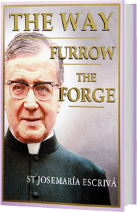 The Way / Furrow / The Forge
